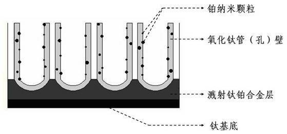 纳米管钯纳米颗粒薄膜催化电极   直接醇类和甲酸燃料电池兼具高效率, 无污染, 无噪声, 适用范围广, 连续工作等优点, 在移动设备电源方面具有广阔的应用前景。目前最常见的催化剂载体为Vulcan-72R 纳米级碳粉,在酸性环境和碱性环境下均表现出优良的化学稳定性;后来又陆续报道了诸如氧化物、碳化物、氮化物等纳米尺度的载体材料,例如氧化钛、氧化锰、氧化钴、碳化钛、氮化钛等纳米粉体,研究发现这类载体材料与铂族金属纳米颗粒之间会产生强的相互作用,对提高催化剂的电化学稳定性和活性具有明显促进作用。由于具有高的比